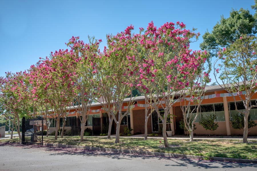 Sacramento Dharma Center front building with trees